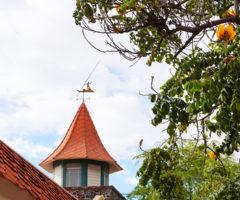 【おすすめハワイ島ツアー】半日観光コナセレクト(4)コナの街散策