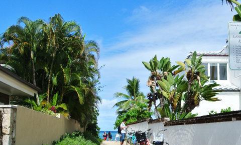 ラニカイビーチへ続く道