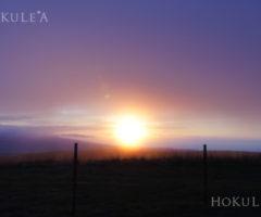 【ハワイ島ツアー】見所を1日で!キラウエア火山とマウナケア星空観測<後編>